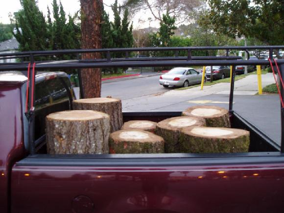 5 Oak Logs; 2 Douglas fir; and an unseen Eucalyptus: enough to bottom out my truck.